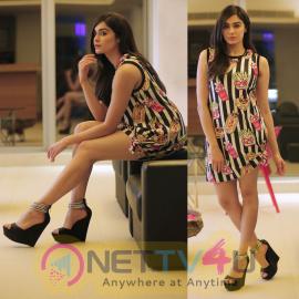 Actress Adah Sharma New & Latest Hot Pics