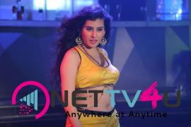 actress archana s latest hot photos  1
