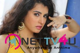 actress archana s latest hot photos  7