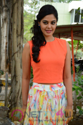 Actress Bindu Madhavi  Gallery Images