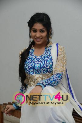 Actress Hamida At Sahasam Cheyara Dimbaka Trailer Launch Photos