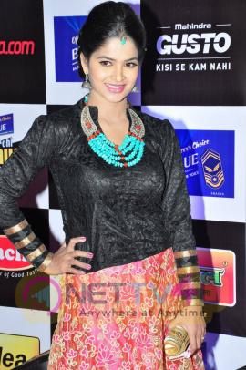 actress madhumitha at mirchi music awards 2014 red carpet stills 10