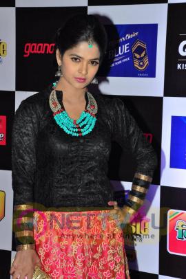 actress madhumitha at mirchi music awards 2014 red carpet stills 13