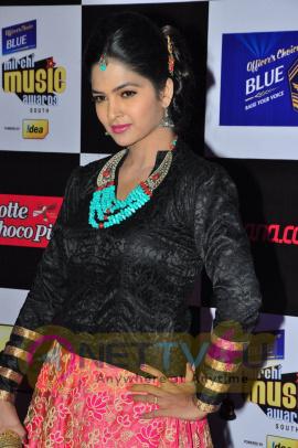 actress madhumitha at mirchi music awards 2014 red carpet stills 17
