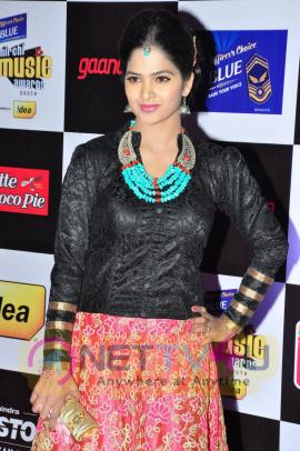 actress madhumitha at mirchi music awards 2014 red carpet stills 19