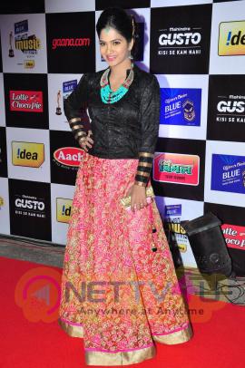 actress madhumitha at mirchi music awards 2014 red carpet stills 20