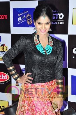 actress madhumitha at mirchi music awards 2014 red carpet stills 23
