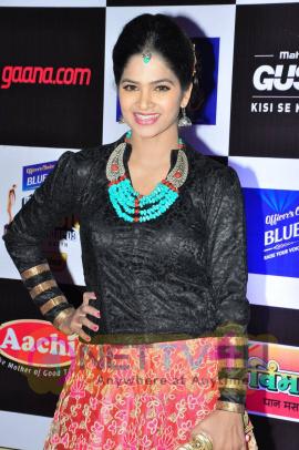 actress madhumitha at mirchi music awards 2014 red carpet stills 25