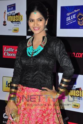 actress madhumitha at mirchi music awards 2014 red carpet stills 26
