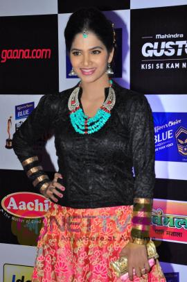 actress madhumitha at mirchi music awards 2014 red carpet stills 9