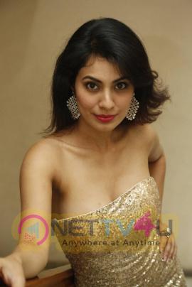 actress manisha kelkar latest photos at friend request movie trailer launch
