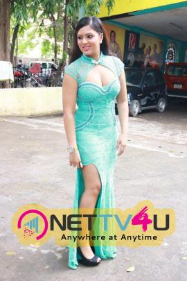 Actress Nikesha Patel Latest Hot Photos
