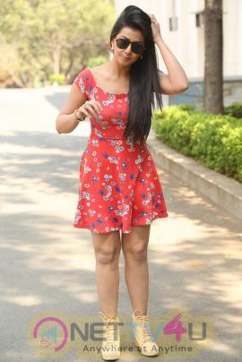 Actress Nikki Galrani Latest Stills