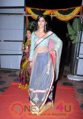 actress pooja hegde hot romance stills