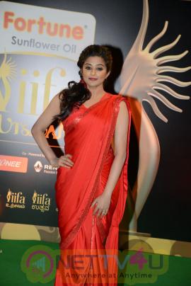 actress priyamani red hot a exclusive images  40 iifa utsavam