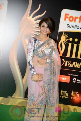 actress rakul preet singh exclusive images  40 iifa utsavam