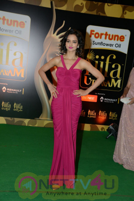 Actress Shanvi Hot & Exclusive Images @ IIFA Utsavam