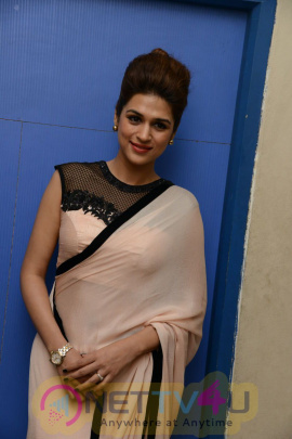 actress shraddha das exclusive images
