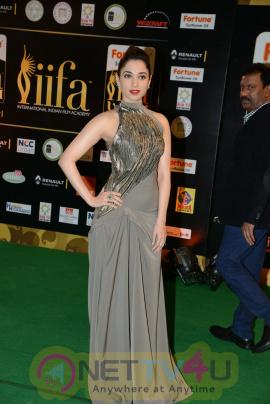 actress tamannaah bhatia exclusive images  40 iifa utsavam