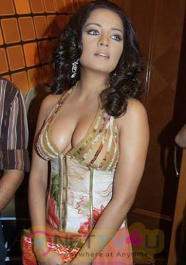 Bollywood Actress Celina Jaitly Latest Hot Sexy Images