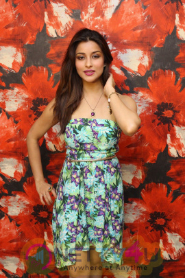 Big Photos Of Interview Of Nyra Banerjee For Film One Night Stand