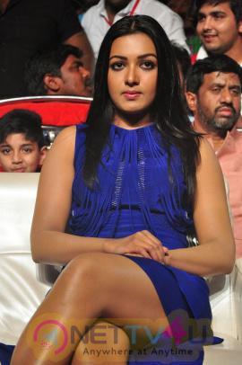 Catherine Tresa At Sarrainodu Blockbuster Function Good-looking Stills Telugu Gallery