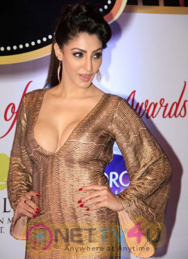 celebrities photos at zee tv 8th boroplus gold awards 2015