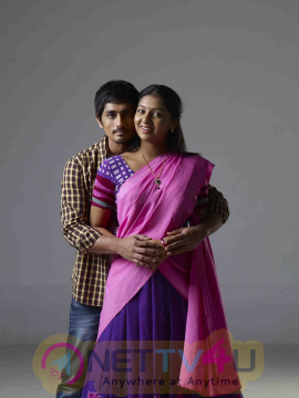 Chikkadu Dorakadu Telugu Movie Stills