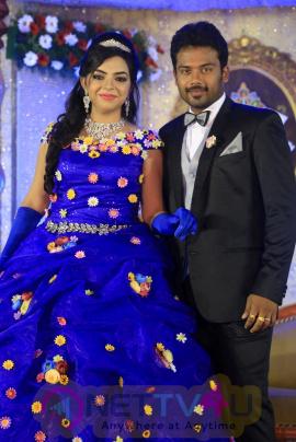 Director R. Pandiarajan Son Prithvirajan Weds Akshaya Wedding Reception Images Tamil Gallery