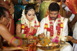 Director R. Pandiarajan Son Prithvirajan Weds Akshaya Wedding Reception Photos Tamil Gallery