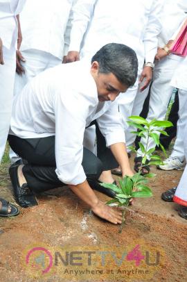 Fidaa Team Participate In Haritha Haaram Event Photos Telugu Gallery