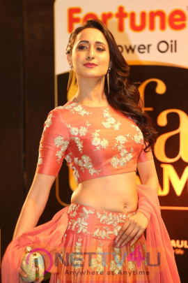 Gorgeous Pragya Jaiswal Hot And Good Looking Stills Hindi Gallery