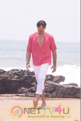 Happy Birthday Movie Stills & Working Exclusive Photos Telugu Gallery