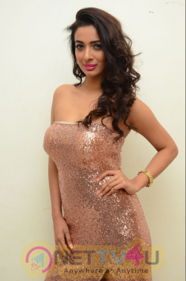 Heena Panchal At Thikka Movie Songs Launch Images Telugu Gallery