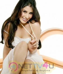 Hindi Actress Sophie Choudry Hot Photoshoot Stills Hindi Gallery