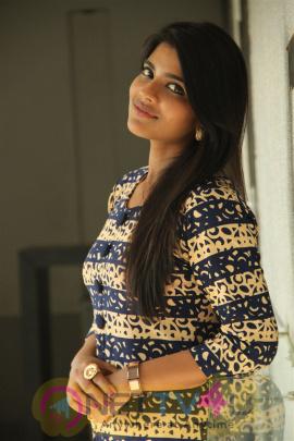 Hello Naan Pei Pesuren Press Meet Photos Tamil Gallery