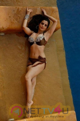 Hindi Actress Ameesha Patel Hot Photo Shoot Stills Hindi Gallery
