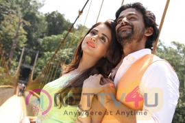 Jessie Kannada  Movie  Exclusive Photos Kannada Gallery