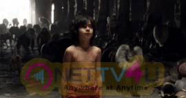Jungle Books Mowgli Comes Home Neel Sethi To Kick Start His International Tour From India Stills English Gallery