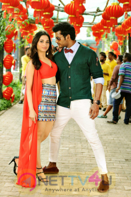 Kathi Sandai Tamil Movie Attractive Stills