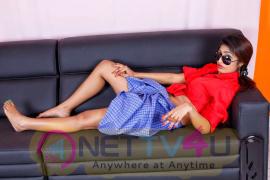 Kannada Actress charulatha Glamour Photos Kannada Gallery