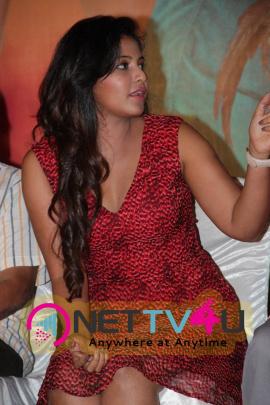 Kollywood Actress Anjali Photos At Sakalakala Vallavan Appatakkar Movie Press Meet