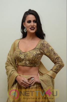 Larissa Bonesi Cute Photos At Thikka Movie Audio Launch Telugu Gallery