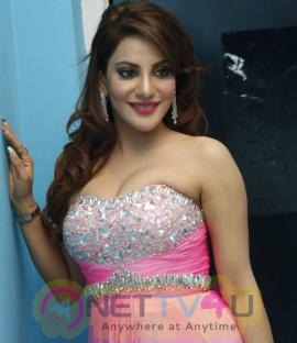 Latest Photos Of Actress Preeti Soni At Haveli Coffee Shop Opening
