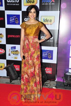 latest photos of actress ritu varma at mirchi music awards 2014 red carpet