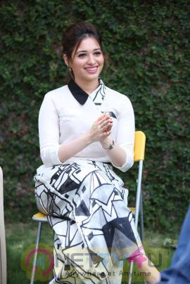 latest photos of actress tamanna at baahubali movie interview 24