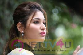 latest photos of actress tamanna at baahubali movie interview 34