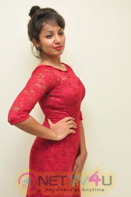 latest photos of actress tejaswi at kerintha success meet
