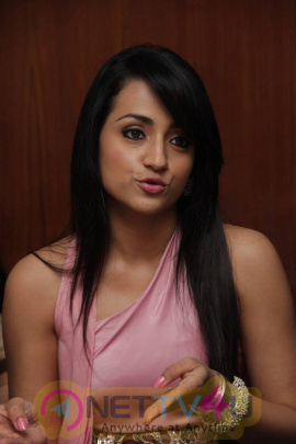 Latest Photos Of Actress Trisha At Sakalakala Vallavan Appatakkar Movie Press Meet