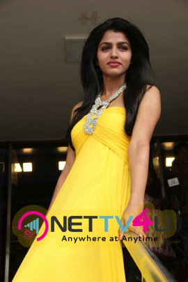 latest stills of actress dhansika in vizhithiru movie audio launch